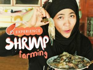 Visit the Largest Buddha Sculpture and Enjoy Cooking at Local Shrimp Farm Bangkok