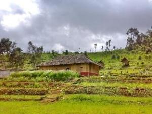 hmong homestay resort